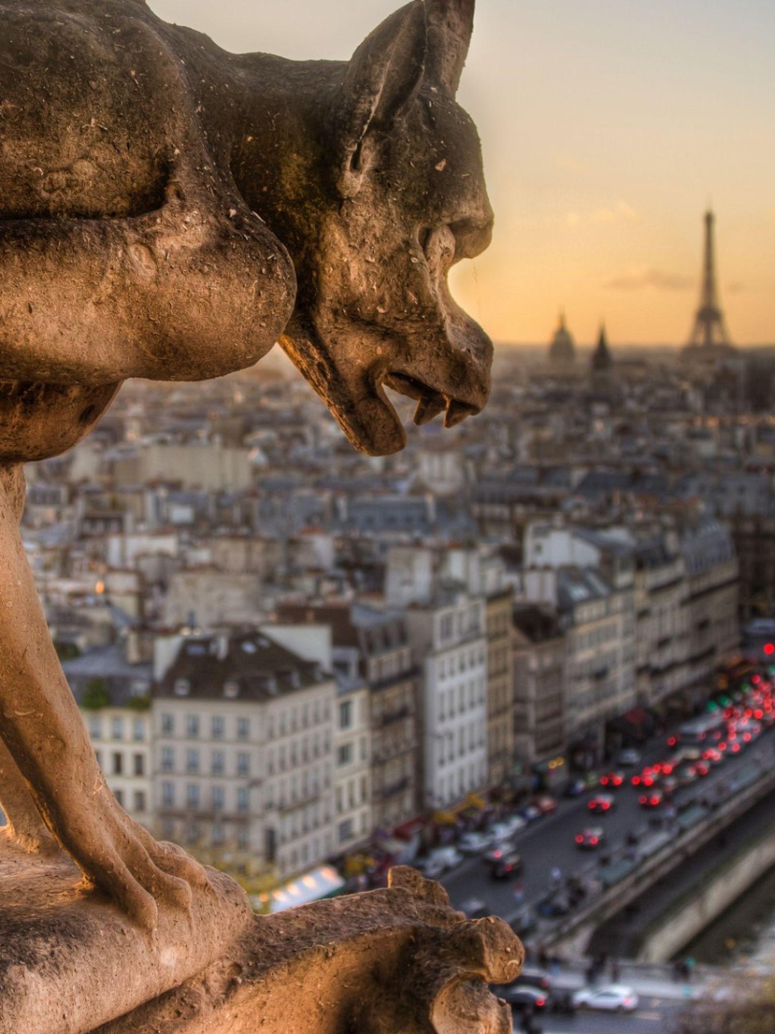 Собор парижской богоматери обои рабочий стол